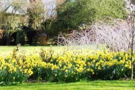 garden gibberd